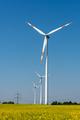 Wind energy plants in a field of blooming oilseed rape - PhotoDune Item for Sale