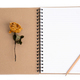 dried rose flower with pencil on notebook - PhotoDune Item for Sale