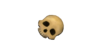 Skull.  thumbnail