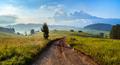 Seiser Alm (Alpe di Siusi) with Langkofel mountain at sunrise, Italy - PhotoDune Item for Sale