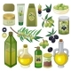 Olive and Oil Vector - GraphicRiver Item for Sale