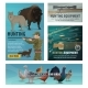 Hunting Season Animal and Birds - GraphicRiver Item for Sale