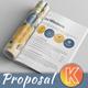 Web Design Project Proposal - GraphicRiver Item for Sale