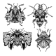 Magic Beetles and Bugs Set. Fantasy Ornate Insects - GraphicRiver Item for Sale