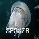 meduza0000