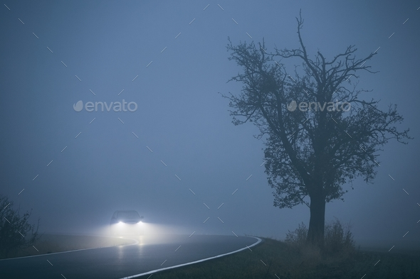 Car in thick fog - Stock Photo - Images