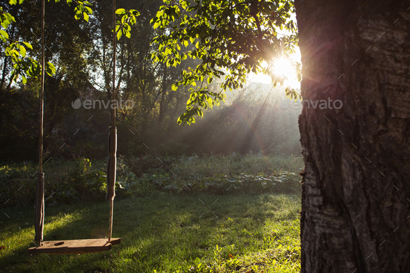 morning dawn - Stock Photo - Images