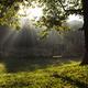 Baby swing morning dawn - PhotoDune Item for Sale