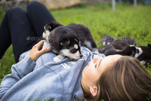 Young women holds her best friend little pet puppy of husky in her arms. love for dogs - Stock Photo - Images
