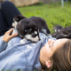 Young women holds her best friend little pet puppy of husky in her arms. love for dogs - PhotoDune Item for Sale