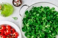 Fresh green Corn salad leaves or lamb's lettuce with tomatoes and olive oil. - PhotoDune Item for Sale