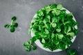 Fresh green Corn salad leaves or lamb's lettuce in bowl - PhotoDune Item for Sale