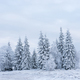 Snow covered frozen trees in the mountains. Christmas time, winter holiday concept - PhotoDune Item for Sale