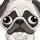 Pug Dog - GraphicRiver Item for Sale
