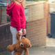 Adorable girl holding teddy bear - PhotoDune Item for Sale
