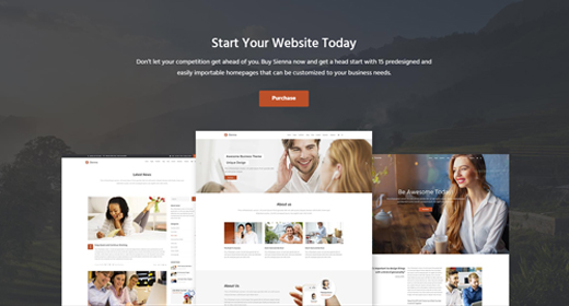 Top Selling Business WordPress Themes