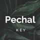 Pechal Keynote Presentation Template - GraphicRiver Item for Sale