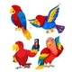 Set of Parrot Characters - GraphicRiver Item for Sale