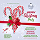Merry Christmas Party Flyer Template - GraphicRiver Item for Sale