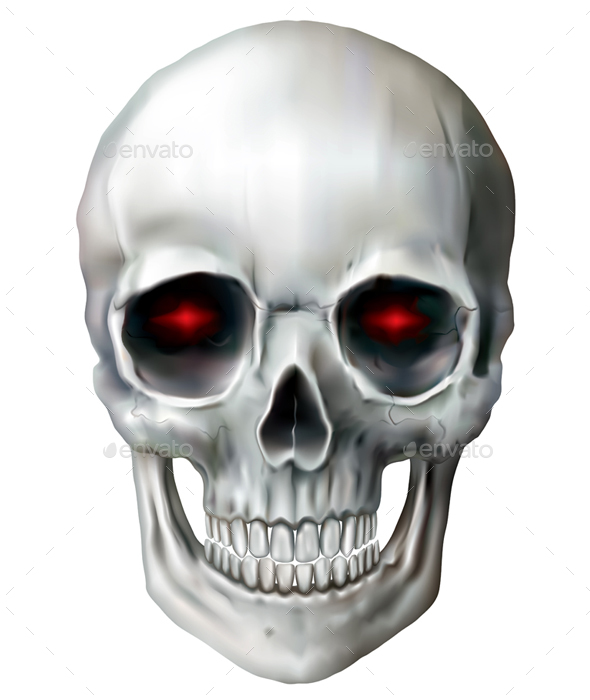 Skull on a White Background - Halloween Seasons/Holidays