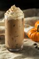 Sweet Refreshing Autumn Pumpkin Spice Latte Iced Coffee - PhotoDune Item for Sale