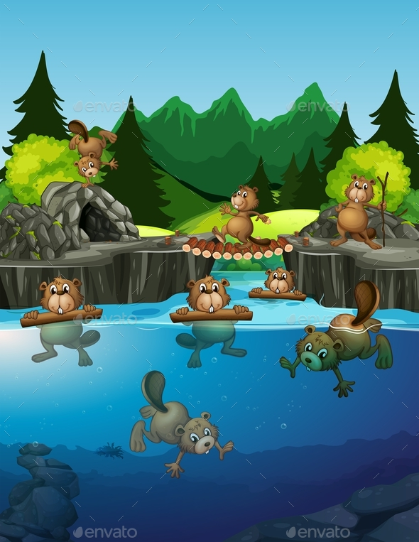Beaver Living in The Lake - Animals Characters