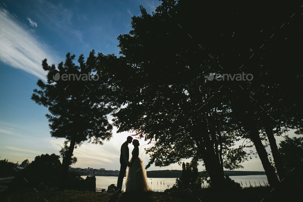 bride groom standing in the park - Stock Photo - Images