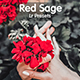 Red Sage Lightroom Desktop and Mobile Preset - GraphicRiver Item for Sale