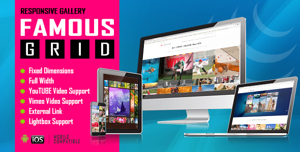 Famous - Responsive Image And Video Grid Gallery            Nulled