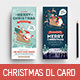 Christmas DL Flyer / Rack Card - GraphicRiver Item for Sale