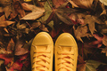 Standing in dry autumn leaves heap - PhotoDune Item for Sale