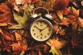 Autumn season time - PhotoDune Item for Sale