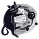 Smart Black Cat Reading the Magic Book - GraphicRiver Item for Sale