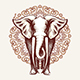 Elephant on Mandala Background - GraphicRiver Item for Sale