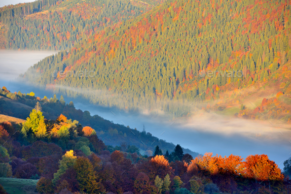 Beautiful autumn mountain landscape in the morning light with fo - Stock Photo - Images