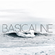 Basicaline Font Family - Sans Serif - GraphicRiver Item for Sale