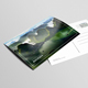 Postcard / Invitation Mock-Ups - GraphicRiver Item for Sale