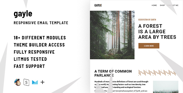 Gayle– Responsive Email + StampReady Builder