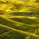 Langhe vineyards sunset panorama, Barolo, Piedmont, Italy Europe - PhotoDune Item for Sale