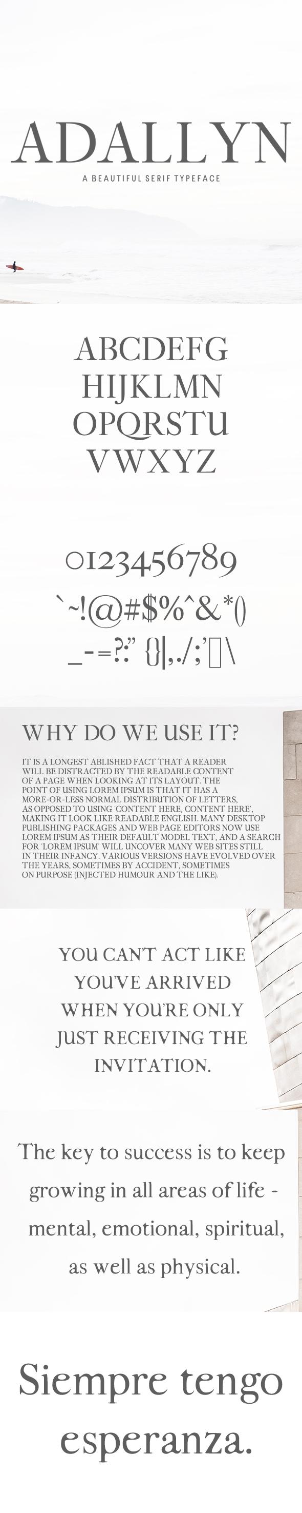Adallyn Serif Font Family Pack - Serif Fonts