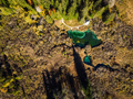 Magical Zelenci in Slovenia, top down view in fall. - PhotoDune Item for Sale