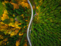 Colorful forest and curvy road, aerial drone view from above - PhotoDune Item for Sale