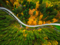 Autumnal foliage  in woodland and winding road, drone aerial vie - PhotoDune Item for Sale