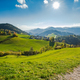 Countryside in rural Slovenia, green pasture and blue sky - PhotoDune Item for Sale
