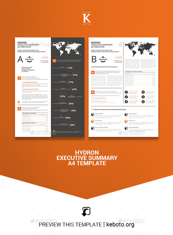 Hedron Executive Summary A4 Template - Miscellaneous Print Templates