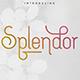 [Spring Vibes] Splendor Font - GraphicRiver Item for Sale