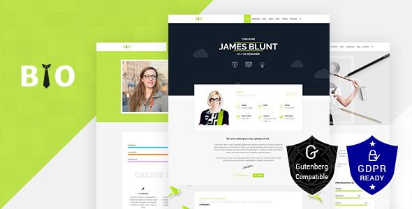 Resume, CV,  Freelancer WordPress Theme - Business Corporate