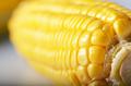 Ripe fresh organic sweet corncob closeup background - PhotoDune Item for Sale