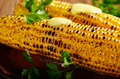 Grilled sweet corn cob with melting butter and greens on clay di - PhotoDune Item for Sale