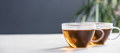 Tea composition on concrete background - space for text - PhotoDune Item for Sale